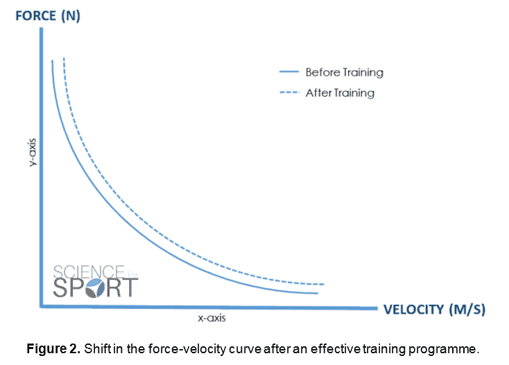 Post-Activation Potentiation | Science for Sport