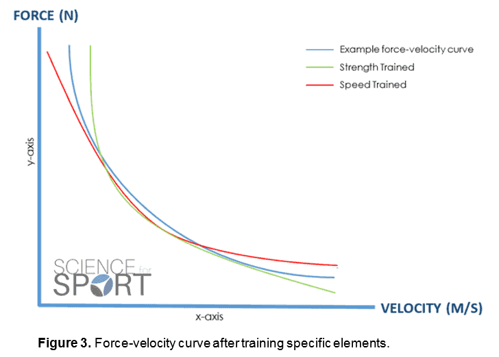 Force Velocity Curve Science For Sport