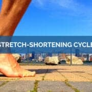 Stretch shortening cycle- Science For Sport