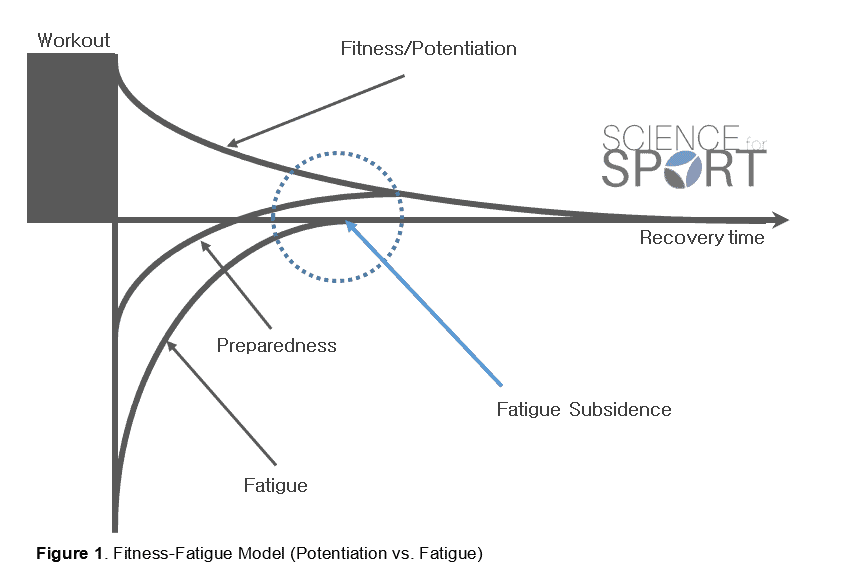 Super Post Activation Potentiation Science For Sport Wiring 101 Capemaxxcnl