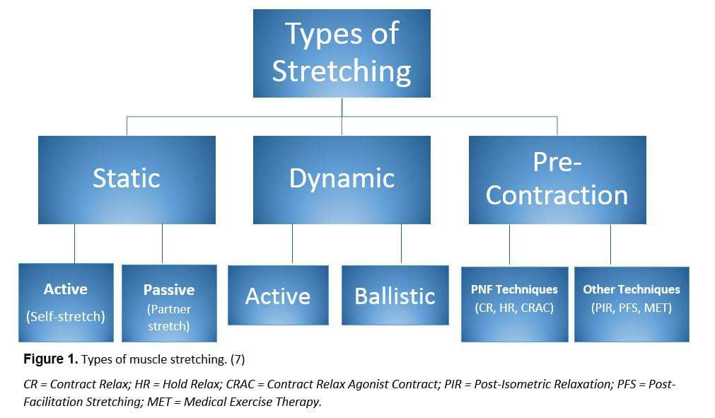 post-exercise stretching - science for sport