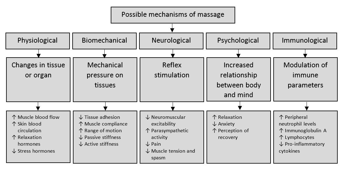 Massage | Science for Sport