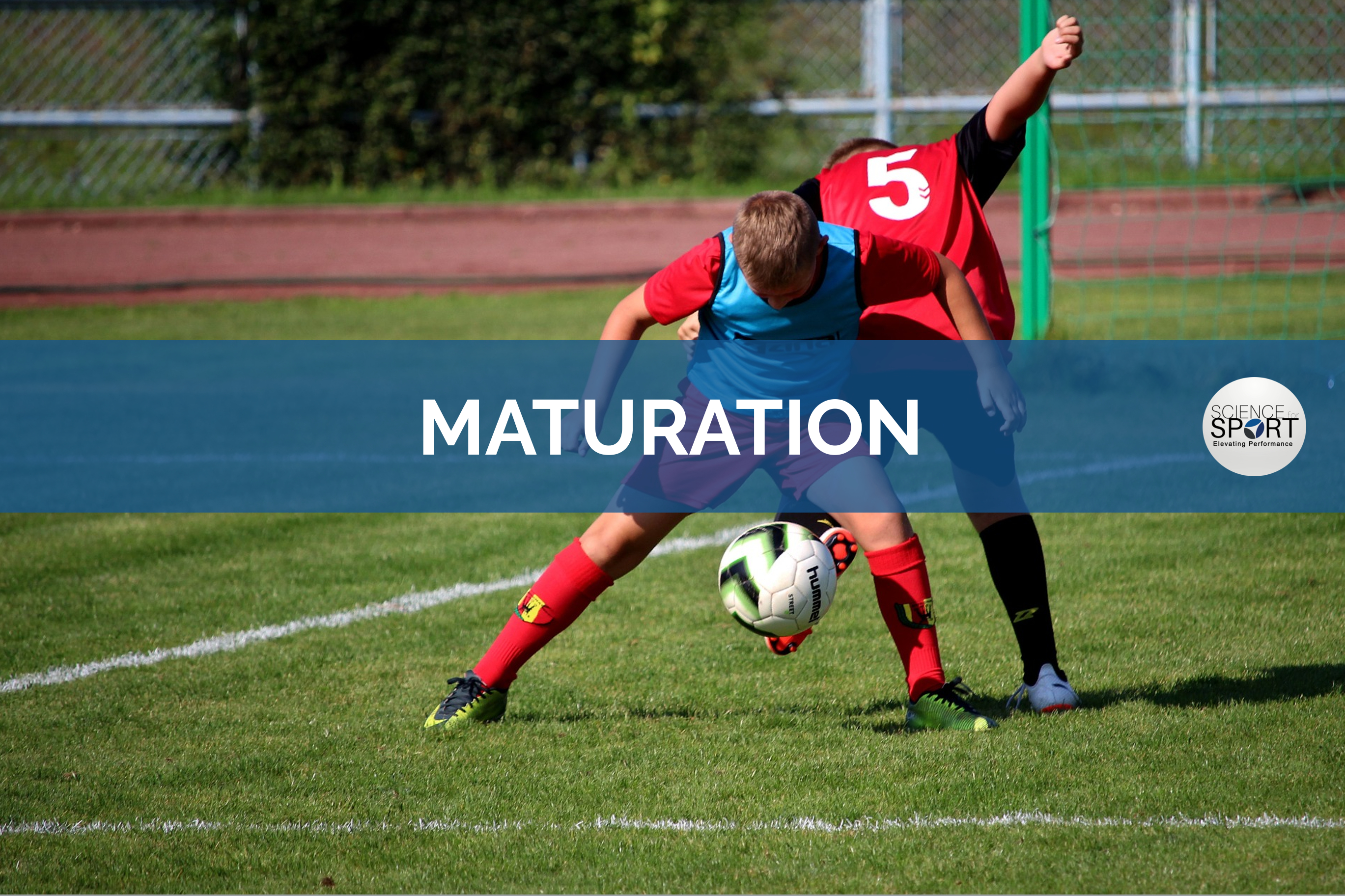 Maturation | Science for Sport