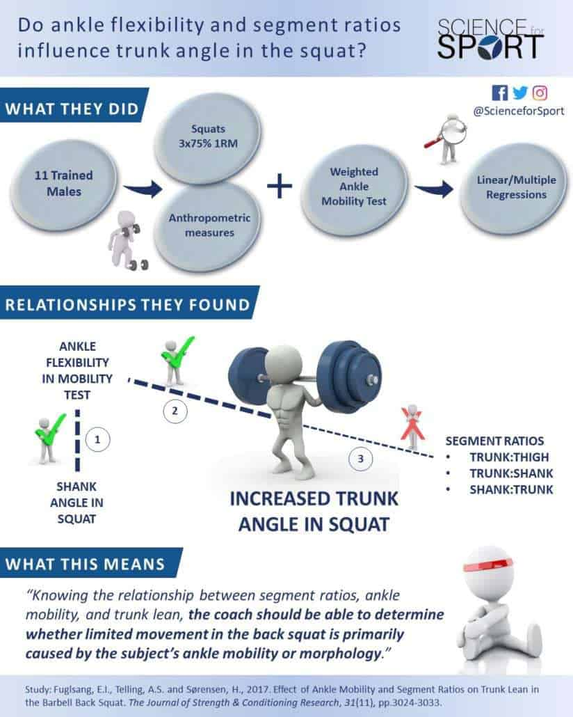 Does Ankle Mobility and Segment Ratios Influence Trunk Angle in the Squat - Science for Sport