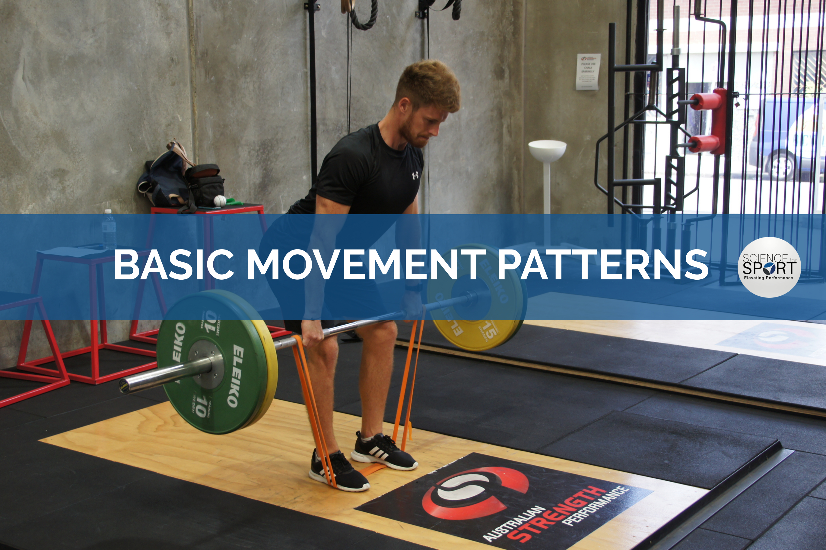 Basic Movement Patterns   Science for Sport