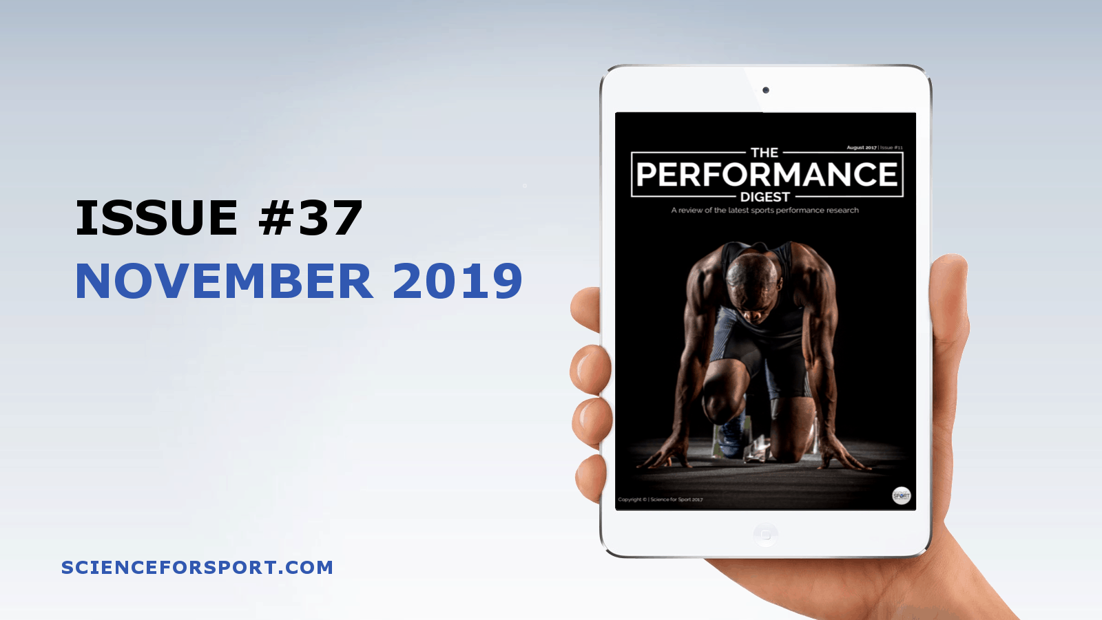 Performance Digest - November 19 (Issue #37)